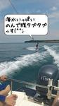 syu_fu.jpg